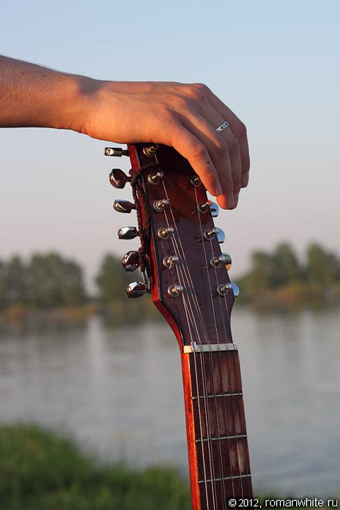 Двенадцатиструнная гитара.